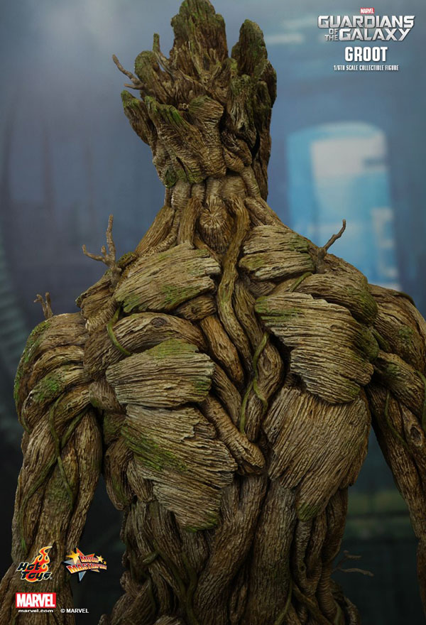 Details from Groot Hot Toys 1/6 Scale Figure