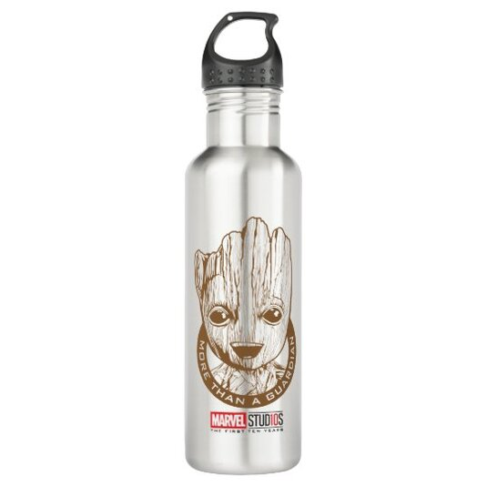 Marvel Studios 10 Years | More Than A Guardian Stainless Steel Water Bottle