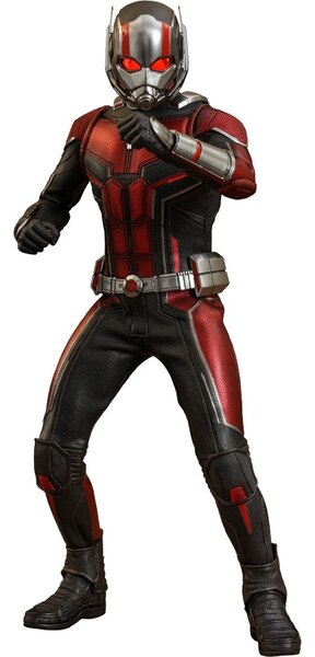 Ant-Man Sixth Scale Figure by Hot Toys - Ant-Man and the Wasp - Marvel  Movie Masterpiece Series