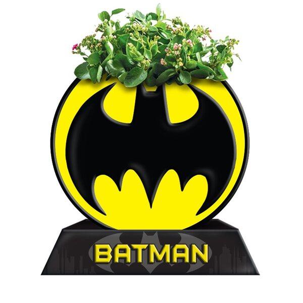 Batman Circle Bat Logo Ceramic Planter by Silver Buffalo